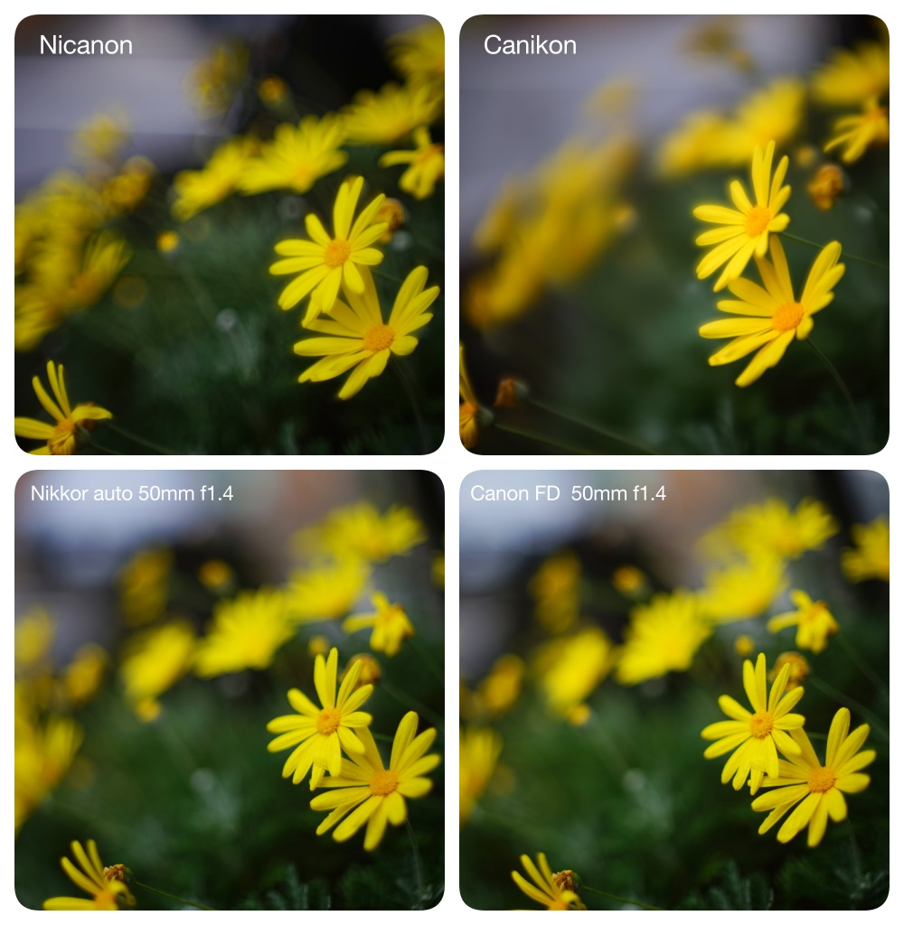Nikoncanon2_2