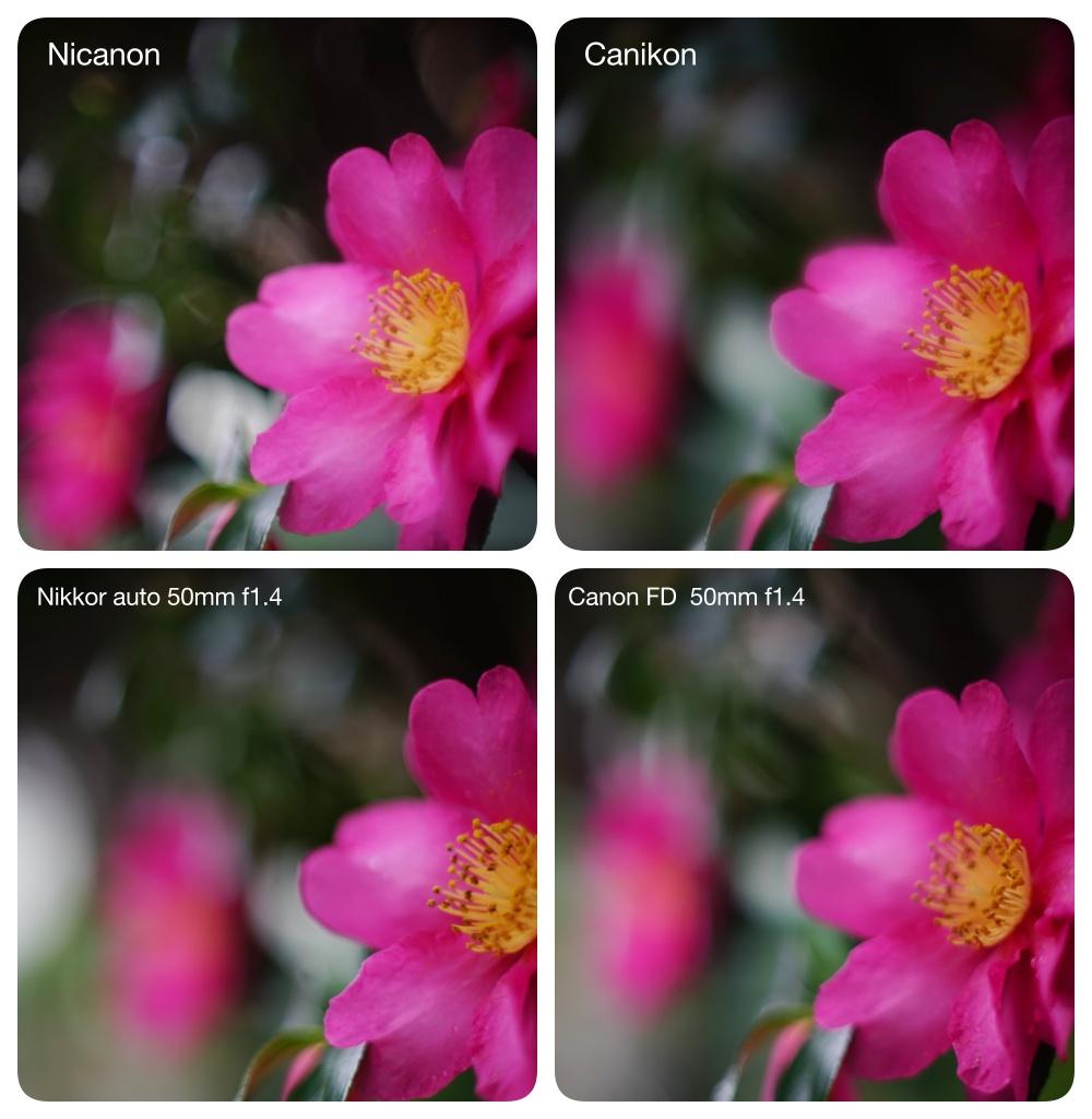 Nikoncanon_4